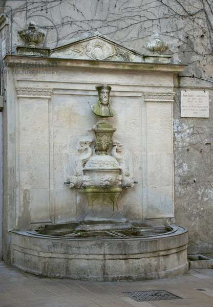 Nostradamus fountain of 1814 with the bust of Nostradamus of 1859, Saint Remy de Provence