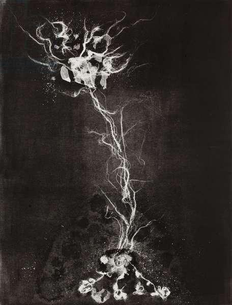Fragility 3, 2009, (monotype)