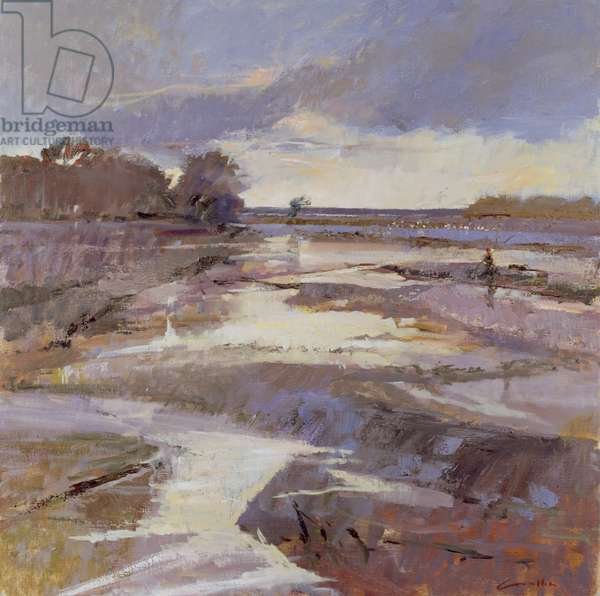 Winter by the Estuary
