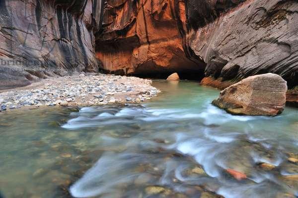 The Virgin River rushing through The Narrows at Zion National Park (photo)