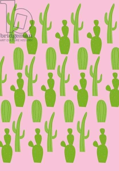 Cacti variety, 2019,