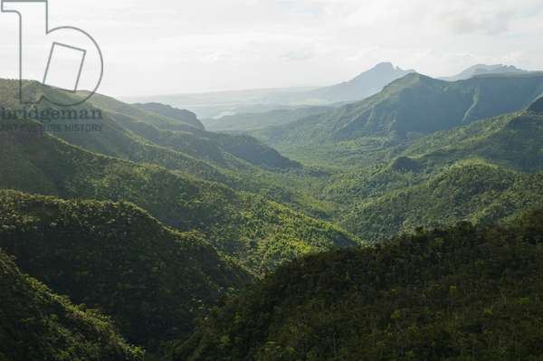 Panorama of the Black River Gorges National Park from Plaine Champagne, Mauritius (photo)