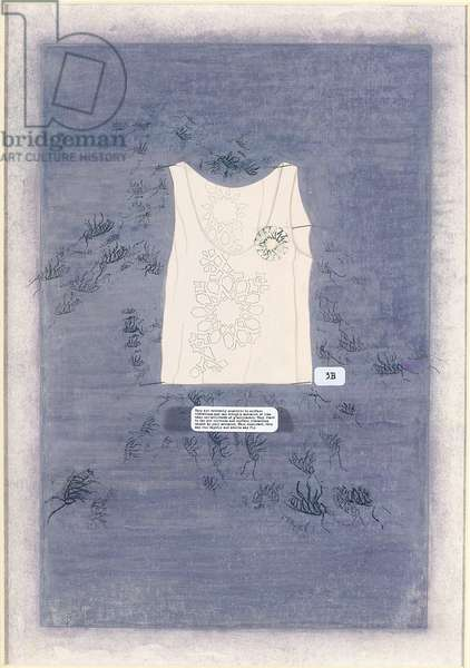 Do Not Get On Skin or Clothing V, 2006 (opaque watercolour, photo transfer, entomology pins and label on)
