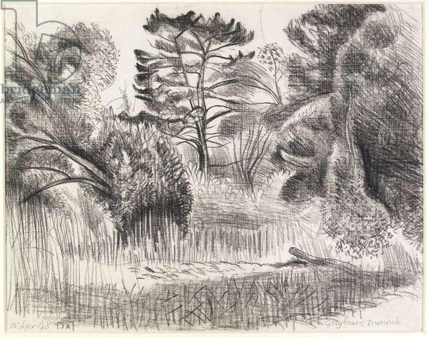 Garden at Greyfriars, Dunwich (pencil)