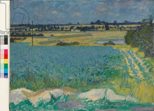 Kale Field, Beaumont Quay, 1950 (oil on canvas)