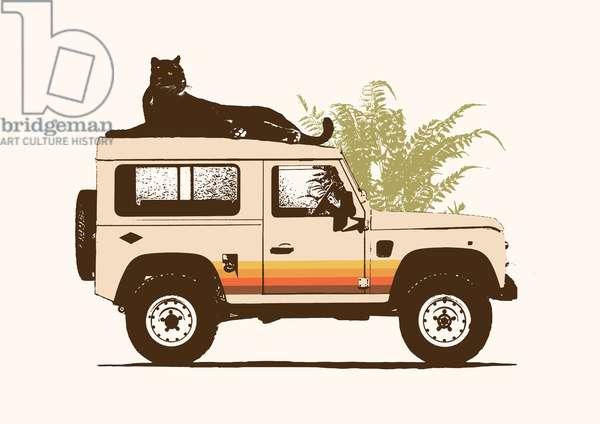 Black Panther on Car