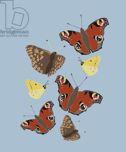 Butterflies, 2019