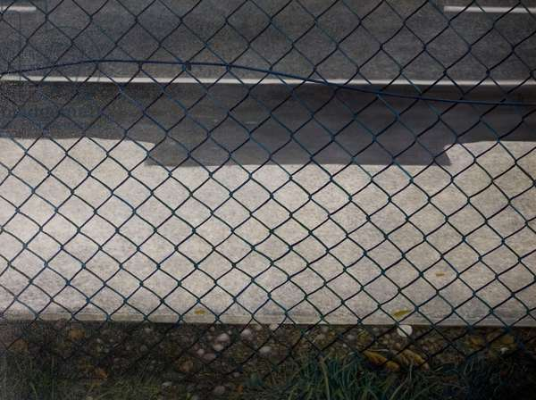 Wire Fence, Four Pounds Avenue, 1971 (oil on canvas)