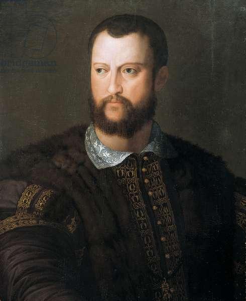 Portrait of Cosimo I de'Medici, 1560 (oil on panel)