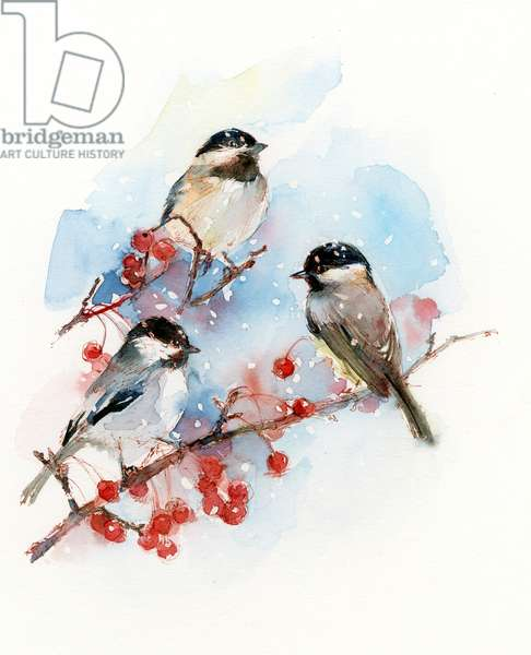 Chickadees with Berries, 2017, (watercolor)