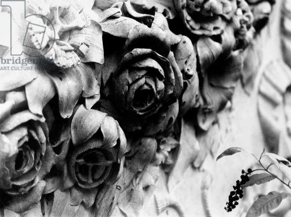 Stone Flowers, Rocca Brivio, Italy, 2018, photo black and white, by Carola Guaineri