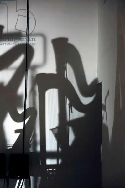 harp shadows