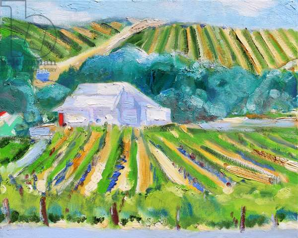 White Barn and Vineyard, Napa, 2019, (oil on canvas)