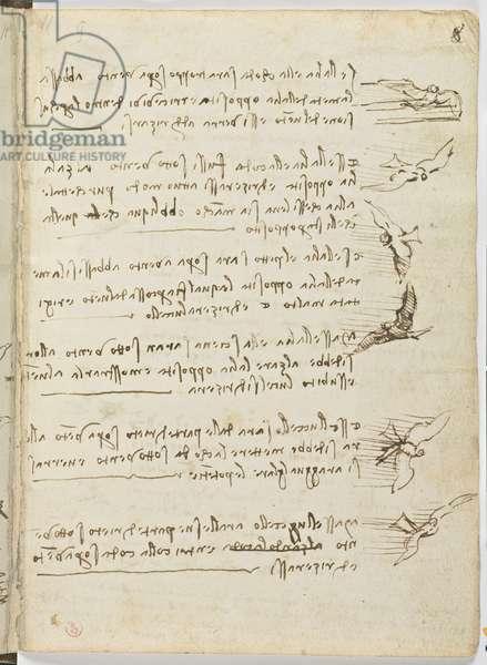 Birds Flight Code, c. 1505-06, paper manuscript, cc. 18, sheet 8 recto