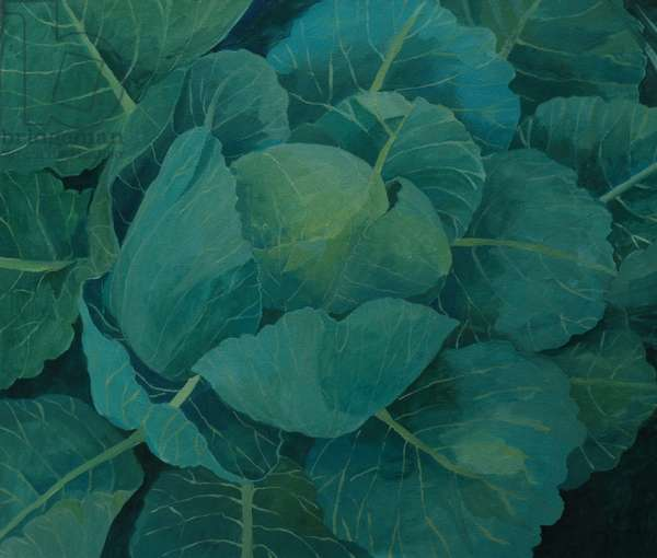 DELETE THIS ONE Close up of of cabbage, 2013, (acrylic on canvas)