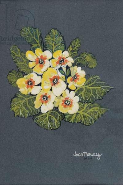 The Yellow Primrose 2012 (gouache on ingres paper)