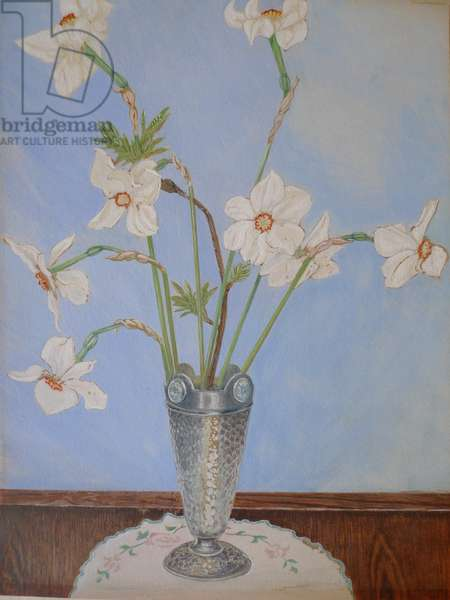Still life with Pheasant's Eye Daffodil in a Pewter Vase (tempera on paper)