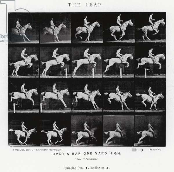 Eadweard Muybridge: The Leap (b/w photo)