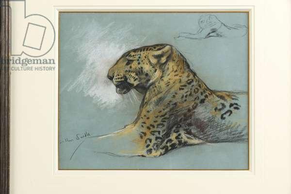A Leopard, c.1910 (pastel on paper)