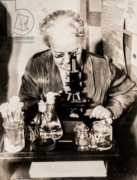 Dr. Amy F. Rowland with a Microscope, Cleveland, OH, USA, 1930 (silver gelatin print)
