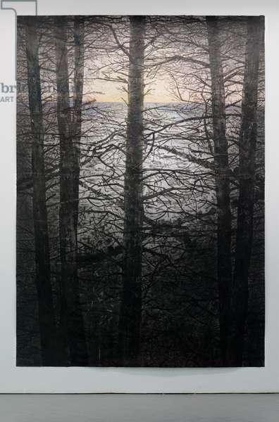 Selva Oscura IV, 2014 (acrylic, charcoal, soot, ash, pencil on paper)