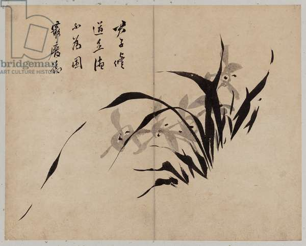 Flowers, Birds, Rocks and Fish, Joseon dynasty, late 19th century (ink on paper)