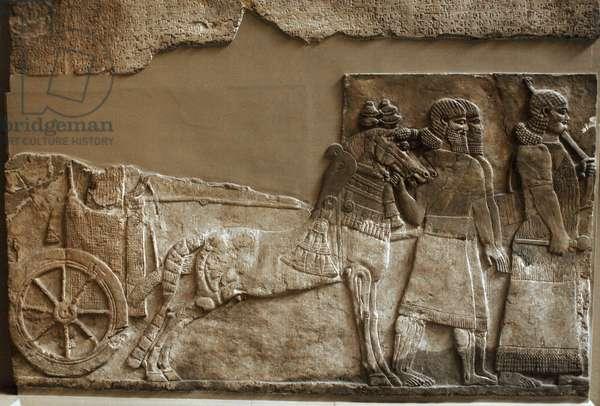 Stone panel. Palace of Tiglath-pileser III. Nimrud. Iraq. Neo-Assyrian. 730-727 BC. British Museum.
