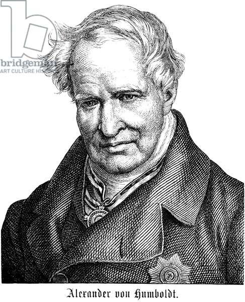 ALEXANDER von HUMBOLDT (1769-1859). German naturalist. Line engraving, German, 19th century.