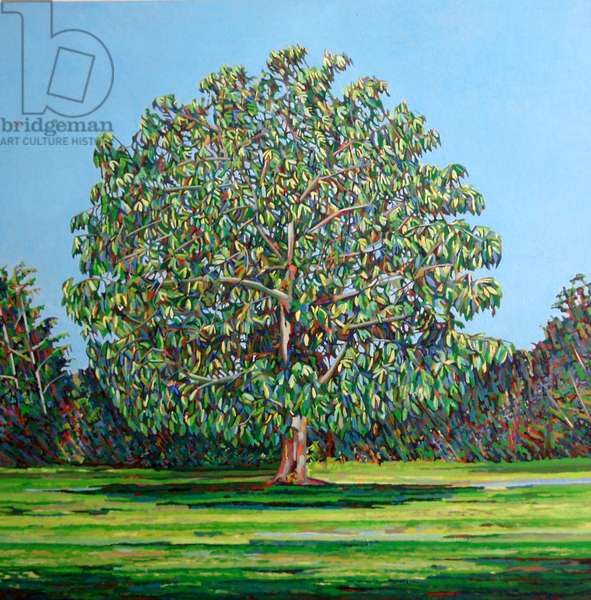 Bow Tree Summer, (oil on canvas)