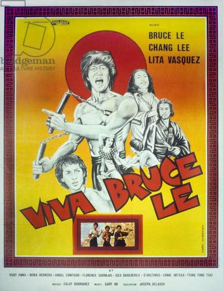 Viva Bruce Le Treasure of Bruce Le de JosephKong avec Bruce Le Lita Vasquez et Chang Lee 1980