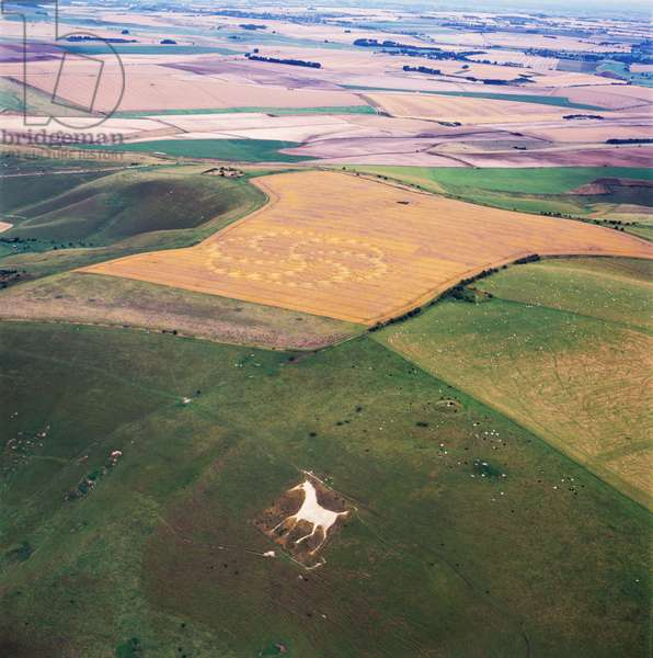 Crop circle in wheat field, Milk Hill, Alton Priors, Vale of Pewsey, Wiltshire, 14th August 2001 (aerial photograph)