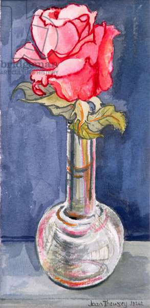 Pink Rose in a Bud Vase, 2000. Water colour on handmade paper