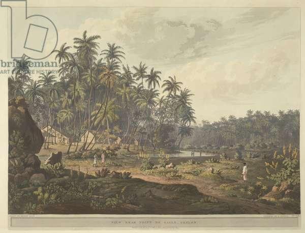 View near Point de Galle, Ceylon.