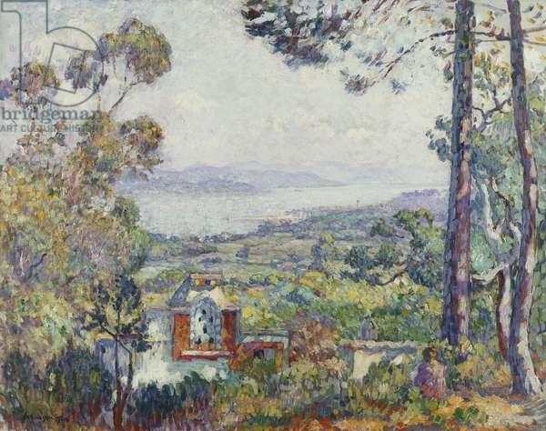 Port de Saint Tropez, 1906 (oil on canvas)