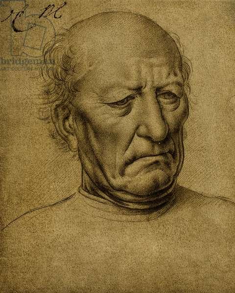 Senile male portrait; drawing by Leonardo da Vinci. The Louvre, Paris