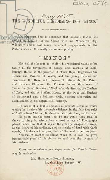 Advert for Minos, the Performing Dog, May 1875 (print)