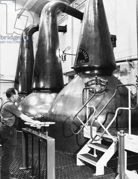 WHISKEY DISTILLATION, 1982 Distillation of Scotch whiskey in stills made of traditional copper, in Scotland, 1982.
