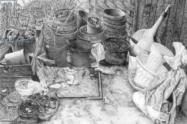 The Back Garden, 1990 (pencil)