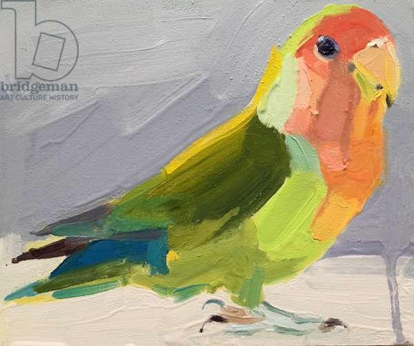 Lovebird, 2017, (oil on board)