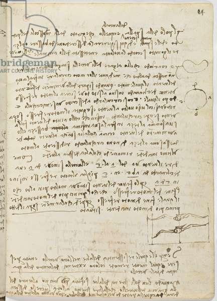 Birds Flight Code, c. 1505-06, paper manuscript, cc. 18, sheet 14 recto