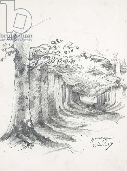 Forest lane at Gournay, 1857 (pencil on paper)