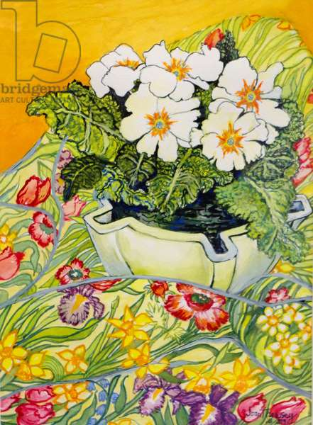 Pale Primrose in a Pot with Spring-flowered Textile,2000 (watercolour)