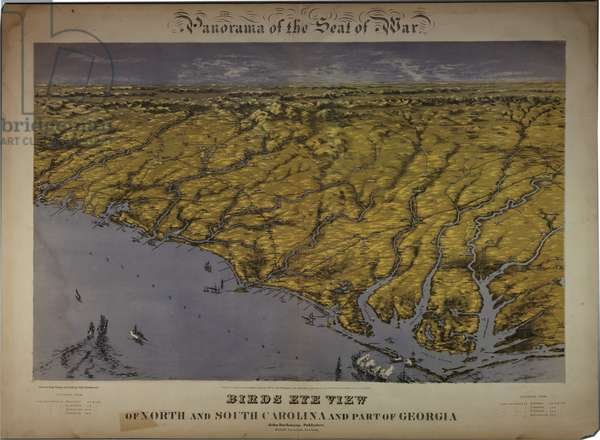 Panorama of the Seat of War: Birds Eye View Of North And South Carolina And Part Of Georgia, 1861 (colour litho)