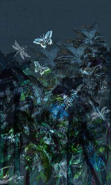 Dark Tropics