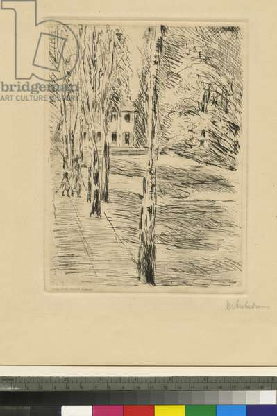 The Artist's House, Wannsee (etching)