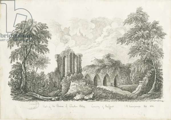 Croxden Abbey: pen and ink drawing, 1836 (drawing)