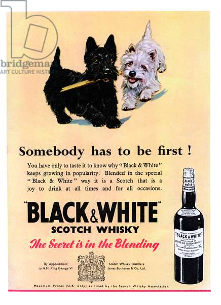 Advertisement for Black & White Scotch Whiskey 1950s