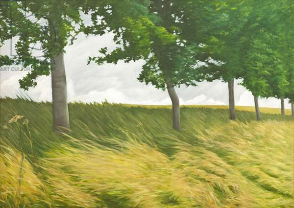 Trees, Dry Grass and Clouds along a Bridleway, 2011 (oil on canvas)