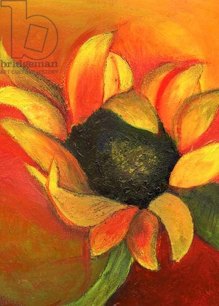 September Sunflower, 2011, (acrylic on card)