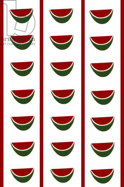 Design -CR- Watermelons in White